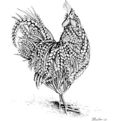 sarah boulton blue velvet Wheat Rooster